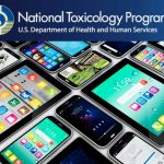 National Toxicology Program Cell Phone Study