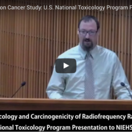 VIDEO PRESENTATION OF NTP CELL PHONE RADIATION AND CANCER STUDY RESULTS