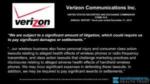 Verizon Telecom 10 K Liability image