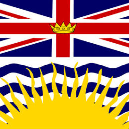 RESPONSE TO THE BRITISH COLUMBIA'S PROVINCIAL HEALTH OFFICER