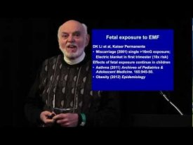 Dr. Martin Blank: Electromagnetic Fields