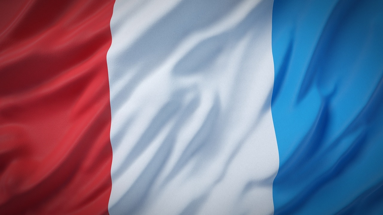 France - Policy Recommendations on Cell Phones, Wireless Radiation & Health