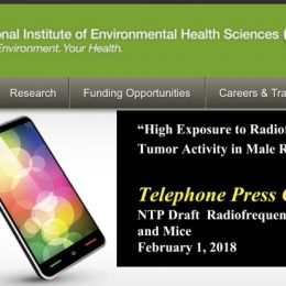KEY DOCUMENTS ON NIH STUDY ON CELL PHONE RADIATION AND CANCER